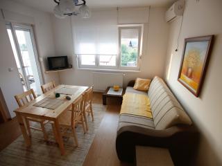 "Apartment ""Milica"" in Banja Koviljača - Banja Koviljaca vacation rentals"