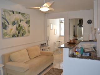 Nice, Modern 1 Bedroom Apartment in Copacabana - Rio de Janeiro vacation rentals