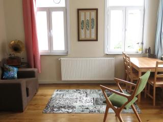 Cosy flat with 2 bedrooms @ TAKSIM - Istanbul vacation rentals