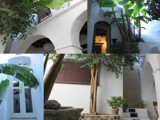 Original Andalusian House with Patio - Garden - Vejer vacation rentals