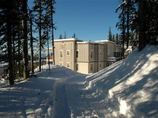 Location, location!  Ski in/out  Pet Friendly too! - Silver Star Mountain vacation rentals