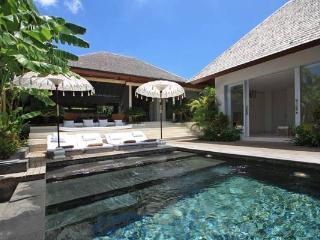 Luxury 4 bedrooms Villa La Banane in Umalas - Canggu vacation rentals
