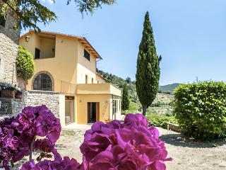 Splendid Villa with wellness area ideal for groups - Cortona vacation rentals