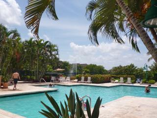 Gorgeous!  Lakeview, Pool, Tennis, Gym - Weston vacation rentals