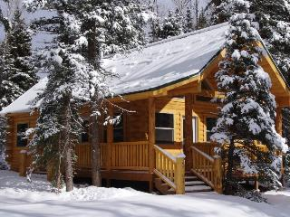 Moose - Secluded Wilderness Cabin w/ River fishing - South Fork vacation rentals