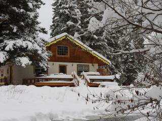 Champoluc - Chalet, Private Hot Tub, Riverfront - Del Norte vacation rentals