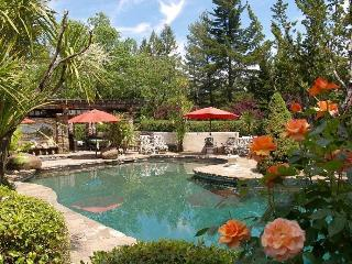 Villa Terra Bella - Private Vineyard Estate - Sonoma County vacation rentals