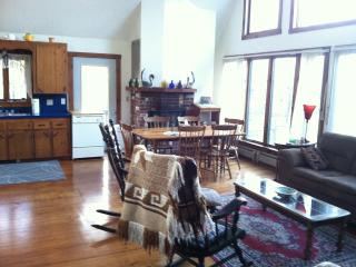 Susan's House - Newport Center vacation rentals