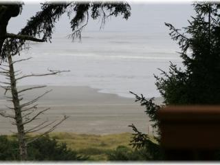 Fabulous beach view cabin, close to Ocean Shores! - Westport vacation rentals