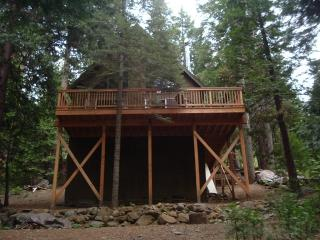 Rustic Sierra Cabin near Bear Valley - Pinecrest vacation rentals