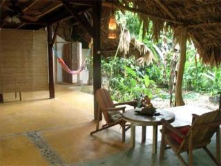 Caribbean Jungle Beach Home - Limon vacation rentals