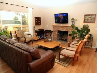 BEAUTIFUL * 3 BED * PRIVATE YARD WITH BIG SPA! - Dana Point vacation rentals
