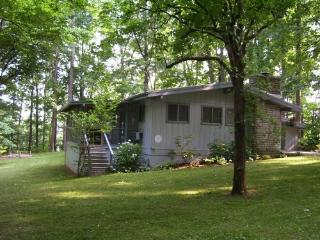 Secluded Cabin in Beautiful Wooded Area Lake Cumb - Kentucky vacation rentals