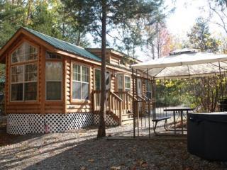 Cozy Wilderness Lodge, Sleeps 6 - Princeton vacation rentals