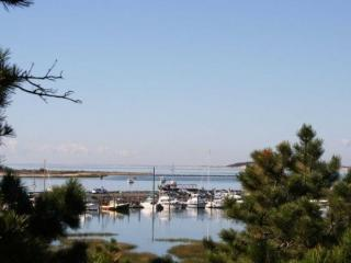 Wellfleet Waterfront with Wellfleet Harbor Views - Wellfleet vacation rentals