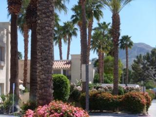 Enjoy the 50+ Good Life in Palm Springs Style - Cathedral City vacation rentals