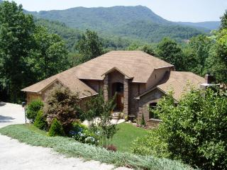 Asheville-Hendersonville privacy & luxury - Hendersonville vacation rentals
