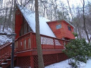 Mountain cabin minutes from ski lodge - Gatlinburg vacation rentals