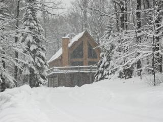 Beautiful Okemo chalet with Hot Tub - Sleeps 16 - Ludlow vacation rentals