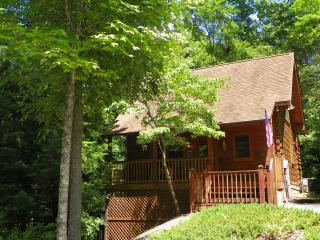 Cabin in Pigeon Forge close to the parkway - Pigeon Forge vacation rentals