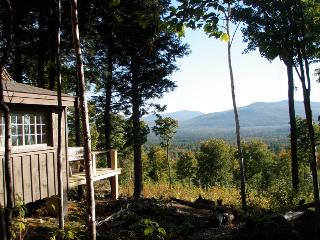 Secluded rustic cabin on 70 acres- mountain views! - Newry vacation rentals