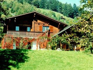 La Taupiniere - Moleson vacation rentals
