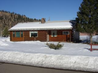Fam Friendly High Mountain Log Home - Lots of Snow - Del Norte vacation rentals