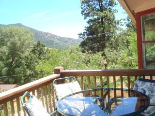 ROCKY MOUNTAIN RETREAT: MTN VIEW, NATL FOREST - Manitou Springs vacation rentals