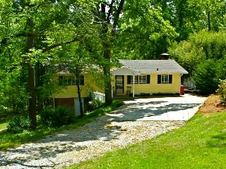 Newly Renovated S Lake Cottage with Pontoon Rental - Cumming vacation rentals