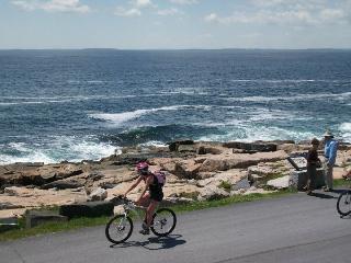 Rental on Schoodic Point @ Acadia National Park - Winter Harbor vacation rentals