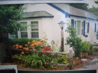 $600 weekly for July and August. w/ sltwtr pool - South Harwich vacation rentals