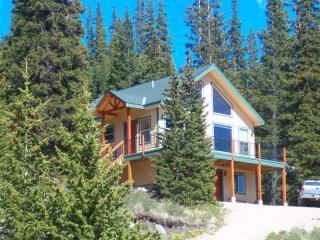 Pete's Cabin near Breckenridge - Breckenridge vacation rentals