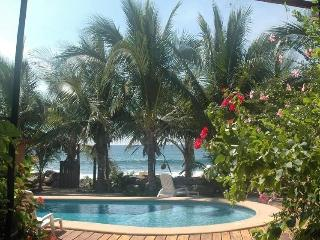 Secluded Oceanfront Tropical Inn - Ixtapa vacation rentals