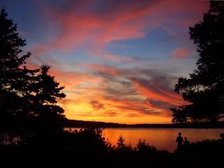 Winter Harbor Apartment - Gouldsboro vacation rentals