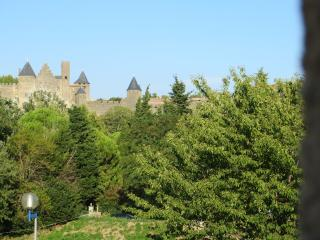 HERITAGE AND NATURE *** - Carcassonne vacation rentals