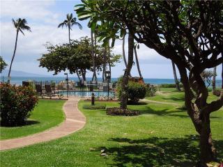 Kanai A Nalu #111 - Wailuku vacation rentals