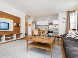 1 BR 70M2★GALATA★RECEPTION★CLEANING★ELEVATOR★METRO - Istanbul vacation rentals