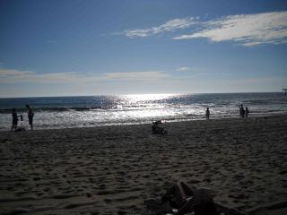 LARGE STUDIO RIGHT ON THE BEACH!! - Santa Monica vacation rentals