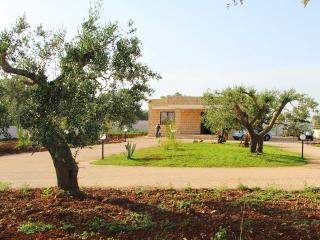 RELAX IN VILLA a due passi da GALLIPOLI - Galatone vacation rentals