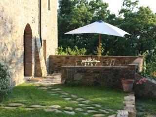 Podere Costarella Apartment Terrazzino - Radicondoli vacation rentals
