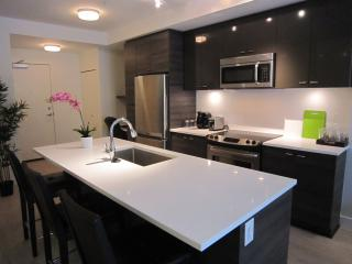 Brand new WITH PATIO, short walk to SKYTRAIN - Vancouver vacation rentals