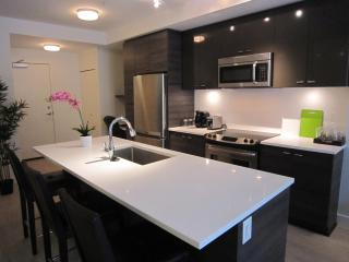 Brand new WITH PATIO short walk to SKYTRAIN - Surrey vacation rentals