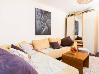 Great place for great price - free parking! - Zagreb vacation rentals