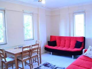 MODERN, STYLISH, SUNNY FLAT IN CENTER - Istanbul vacation rentals