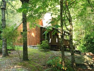 Andrea's Creek 1 creekside cabin on the rocks, hot tub, sleeps 4 - Boone vacation rentals