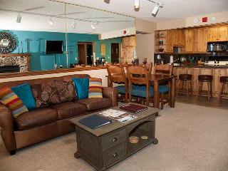 Bronze Tree 401 - Steamboat Springs vacation rentals