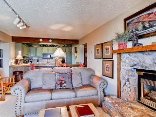 Bronze Tree 501 - Steamboat Springs vacation rentals
