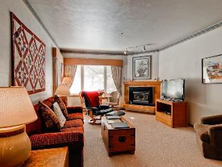 Snow Flower 112 - Steamboat Springs vacation rentals