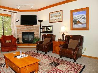 Snow Flower 207 - Steamboat Springs vacation rentals
