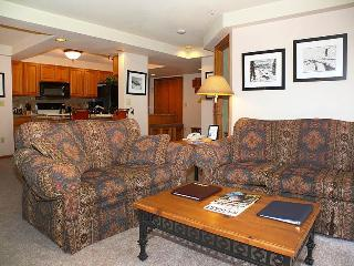 Torian Plaza 407 - Steamboat Springs vacation rentals